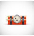 Bomb with clock vector image