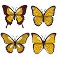 Set of yellow butterflies vector image
