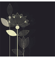 lotus card dark vector image