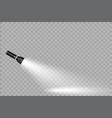 flashlight on a transparent background vector image
