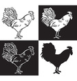 drawing hand cock vector image