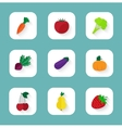 Set of flat icons - fruits and vegetables vector image