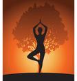 Woman in yoga tree asana vector image