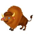 Bison cartoon vector image