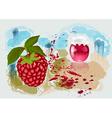 raspberry jam vector image