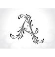 decorative letter vector image