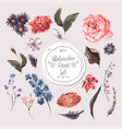 Set of Watercolor Floral Design Elements Roses vector image