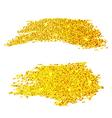 Golden glitter samples isolated on white vector image vector image