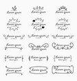 set of label logo decorative calligraphic elements vector image