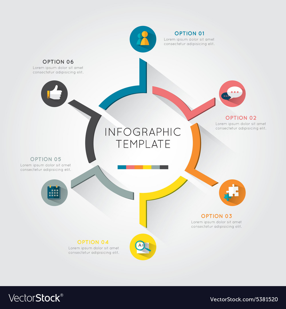 Infographic template colorful circular vector