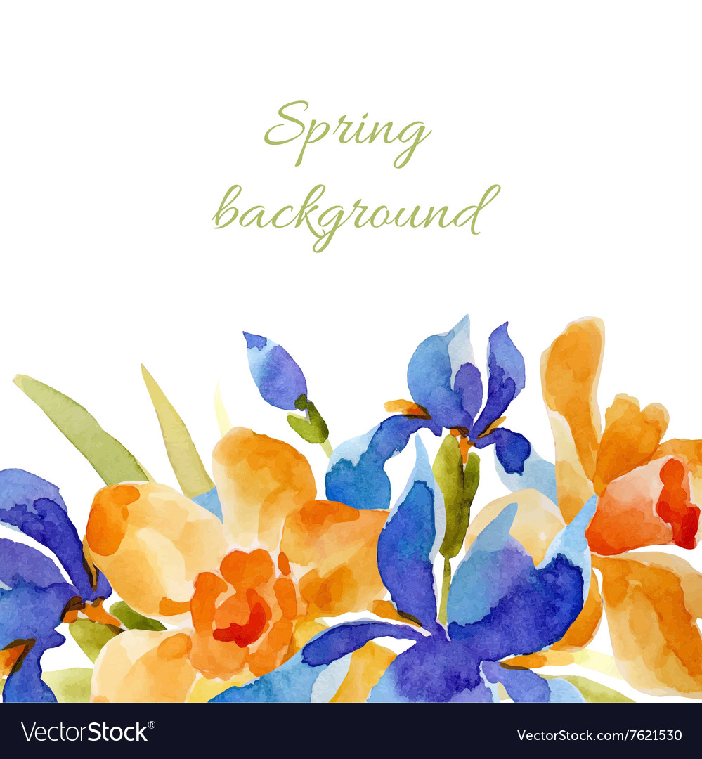 Spring background watercolor lowers vector