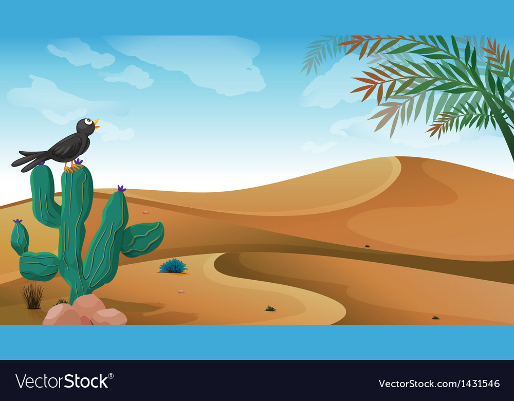 A bird above the cactus plant at the desert vector