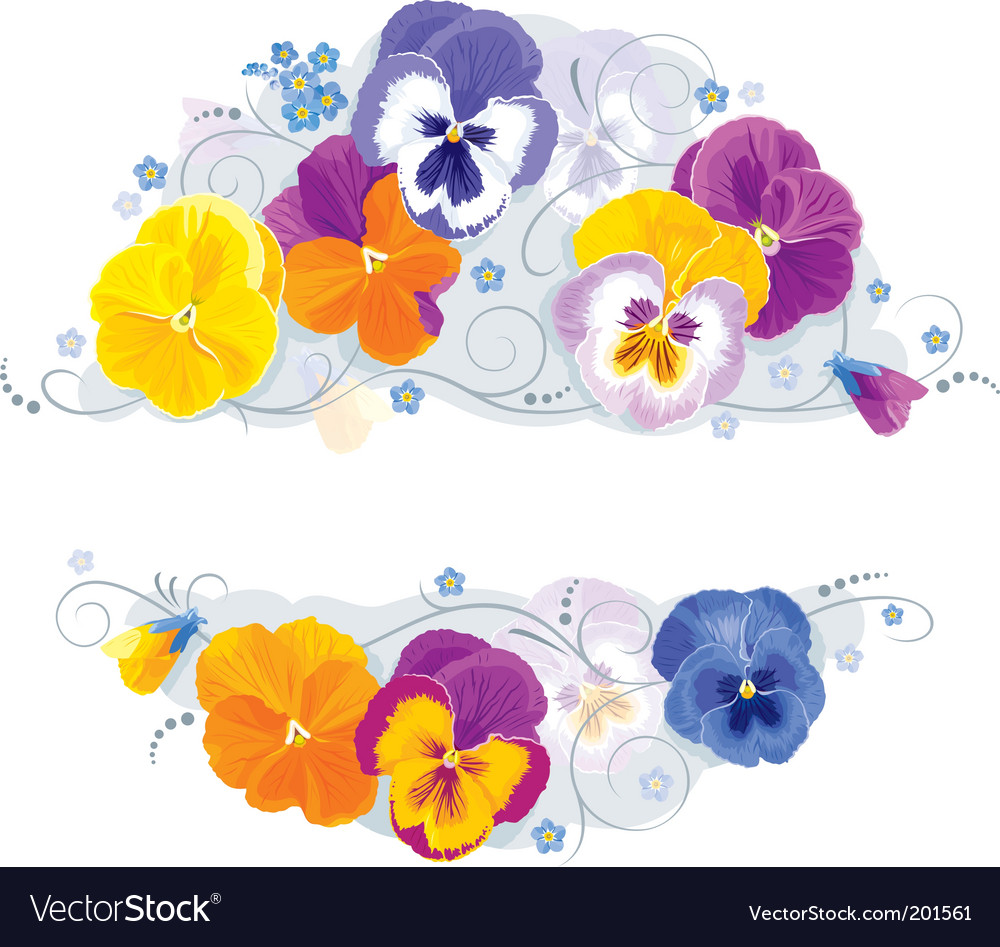 Pansies and forgetmenot vector