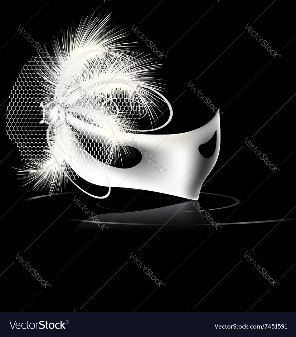 White mask and feathers vector