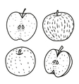Set of Fresh contour apple Doodle style vector image