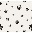 Paw Prints background vector image