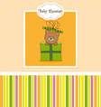 Bear in a gift package vector image vector image