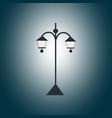 black garden lantern in the darkness vector image