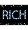 Diamond Rich Word vector image