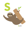 Letter S Sloth hanging on tree Zoo alphabet vector image