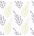 Hand drawn thyme branch stylized black and green vector image
