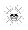 Vintage skull label emblem and logo vector image