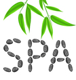Lettering spa with bamboo leaves vector image