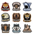 colorful wild animals labels set vector image