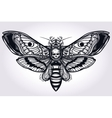 Deaths head hawk moth hand drawn silhouette vector image