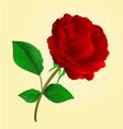 Flower twig Purple Rose and bud vintage vector image