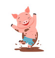 cute happy pig jumping in a dirty pool funny vector image