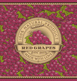 vintage red grapes label on seamless pattern vector image