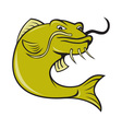 Angry Cartoon Catfish Fish vector image