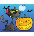 Black Cat And Winking Halloween Pumpkin vector image