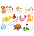Different kind of domestic animals vector image