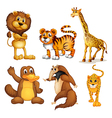 Different kinds of land animals vector image