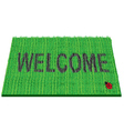 welcome rug vector image