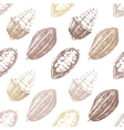 Seamless pattern with cocoa beans vector image