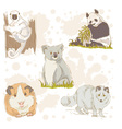 animal wild set color vector image