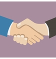 Flat Design Style Icon Businessman partnership vector image
