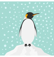 King Penguin Emperor Aptenodytes Patagonicus on vector image