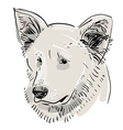 Head muzzle the dog Shepherd Sketch drawing Black vector image