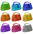 leather bag set vector image
