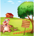 A pig in the farm near the empty signboard vector image vector image