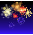 Fireworks on the sky vector image
