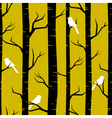 Birches and Birds vector image