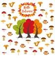Mushrooms autumn pattern vector image