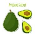 avocado whole slice stickertropical label vector image