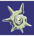 Shell gray vector image