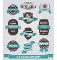 Set of vintage retro labels calligraphic elements vector image vector image